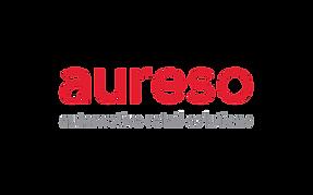startup-aureso.png