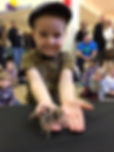 Tom's Talking Reptiles | Birthday Party | Animal Experience | Bug Birthday Party | Children| all abilities | SEN.  Vibrant, caring & professional | Outstanding Reviews | Experienced working with high net worth,high profiled individuals | Sir David Attenborough