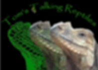 Toms Talking Reptiles, Animal Talks, Reptile party, Crawley
