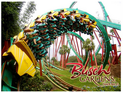 Busch Gardens Student Activity
