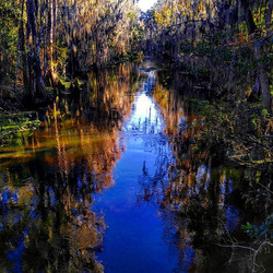 Shingle Creek across the street beauty!_#EDU-Adventure!_ www.thebridgelanguageschoolusa