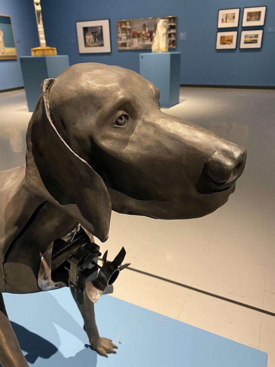 chien 2.jpg