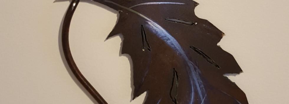 02-Petite plume d'oiseau