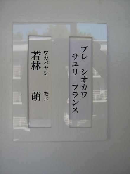 IMG_4905.JPG