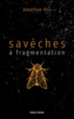 saveches-a-fragmentation.jpg