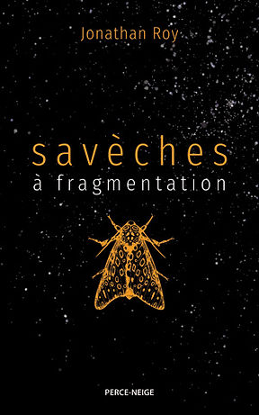 saveches-a-fragmentation.jpg