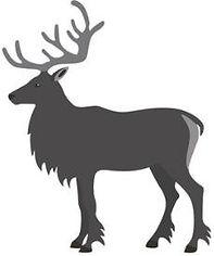 04-caribou.jpg