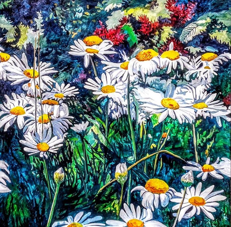 09-Shasta daisies.jpg