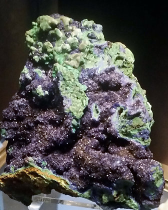 Azurite with Malachite  (Morocco)  AM360