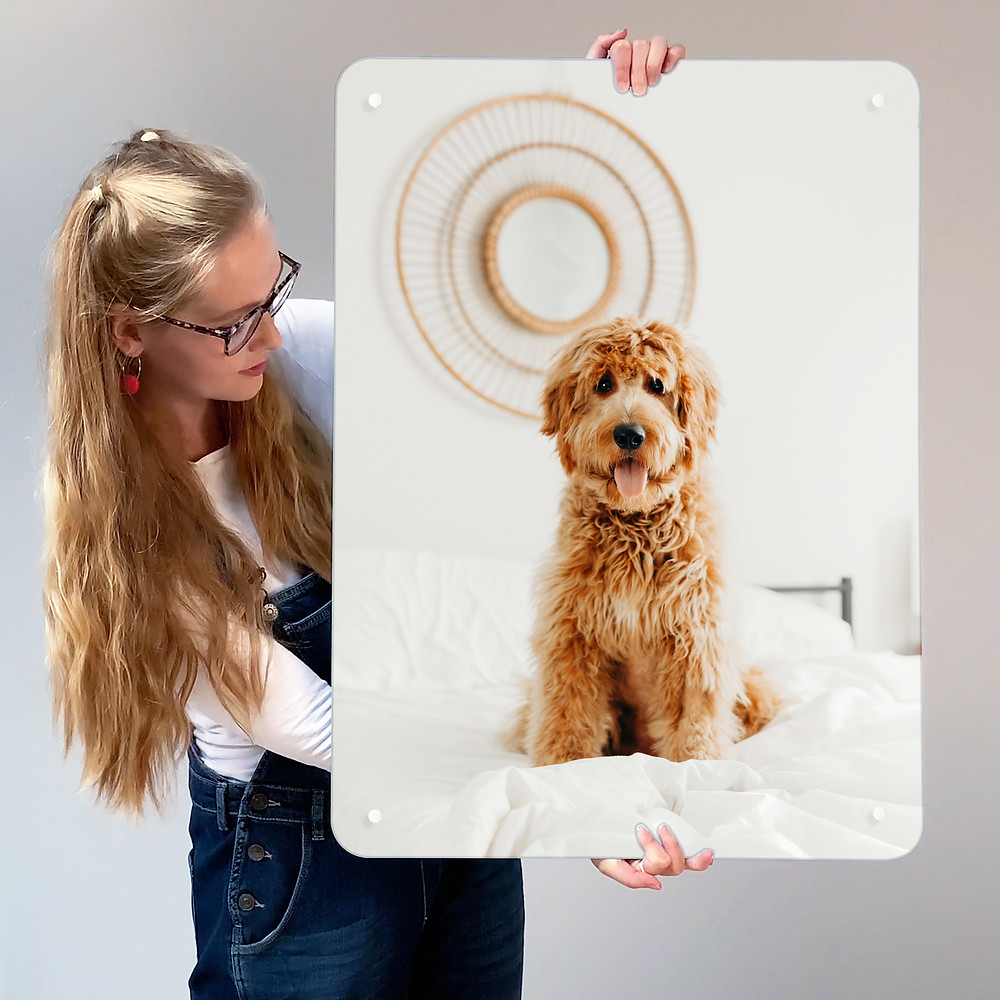 Young woman holding a create your own magnetic board with a photo of a cute pet dog
