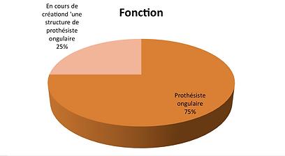 Fomation Prothèsie Ongulaire Institut Laugier, rue Galvani, 3 semaines de formation, Certificat , professionel de la bauté
