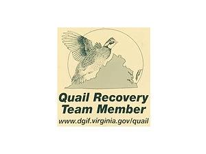 quailrecovery.jpg