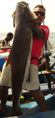 peche en guinée conakry,conakry fishing club