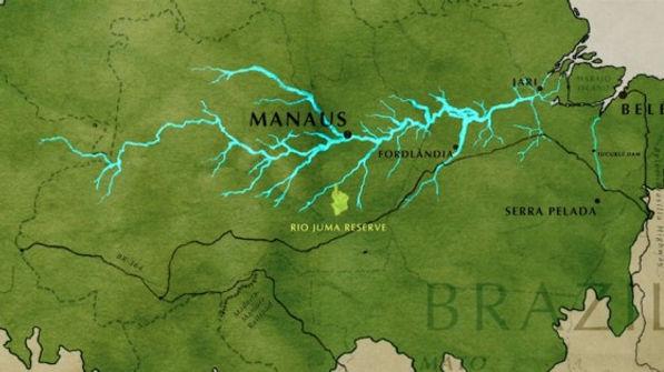 juma , région de Manaus