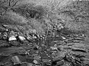 Latheronwheel Stream
