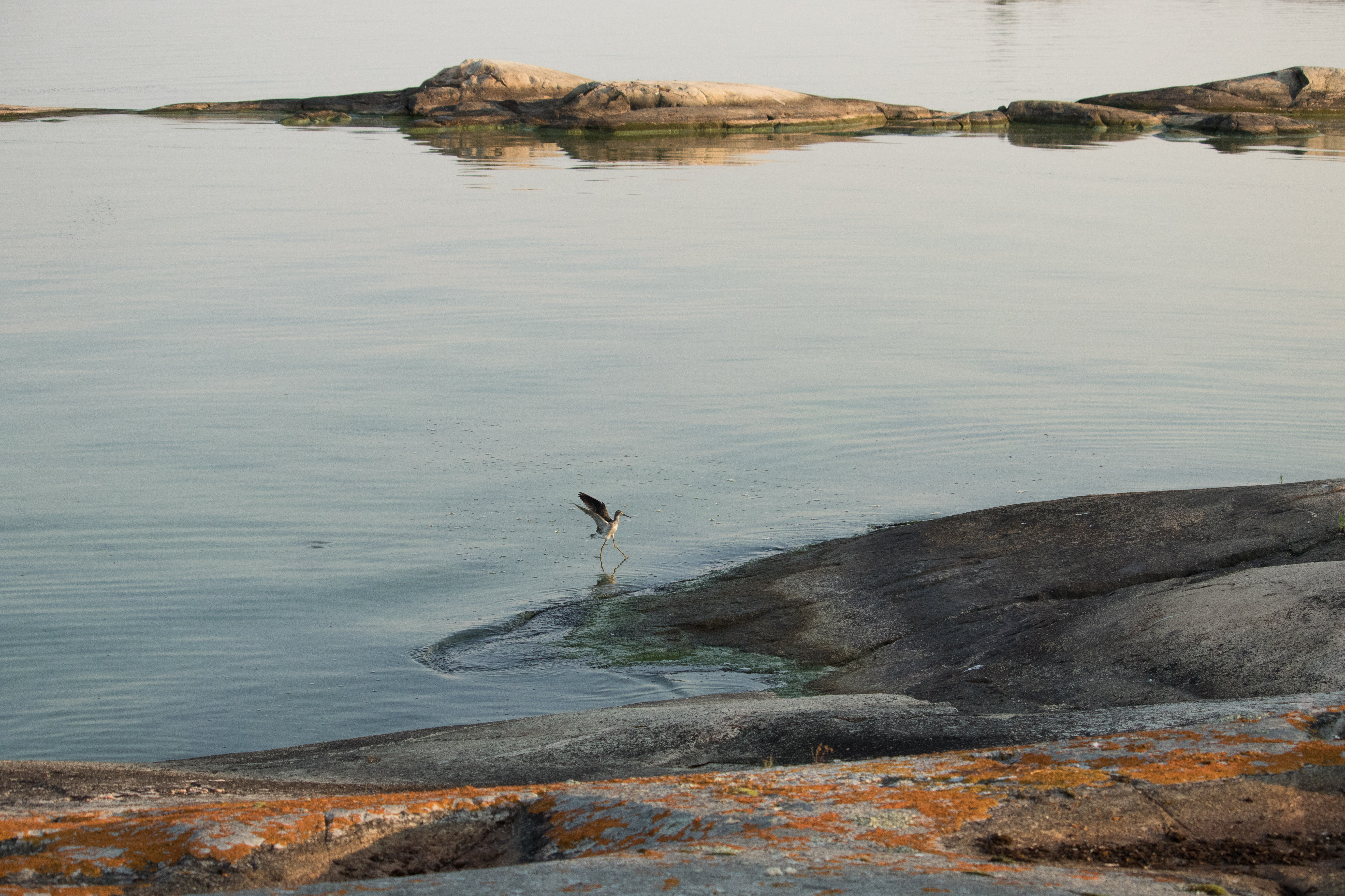 Lake Winnipeg Circumnavigation Campaign
