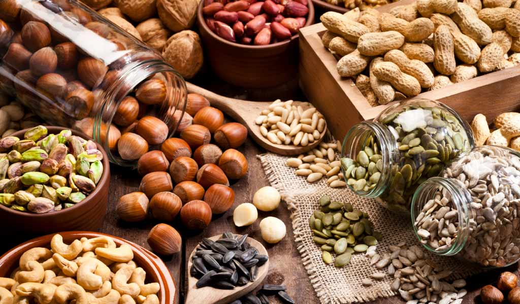1449-19_NutritionofNuts_Banner