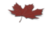 Maple Leaf.F02.2k-800.png