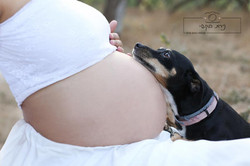 pregnancy  (9)