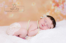newborn  (79)