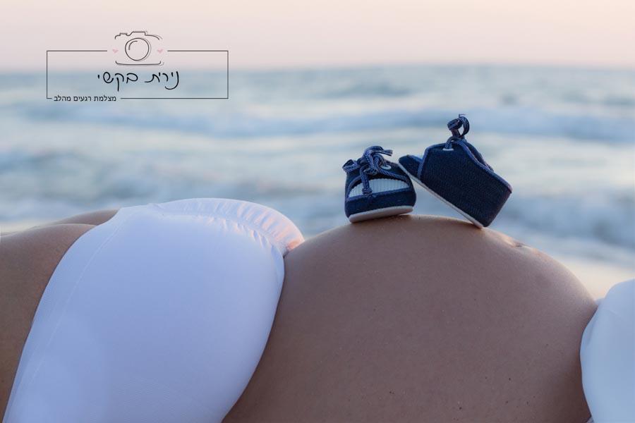 pregnancy  (58)