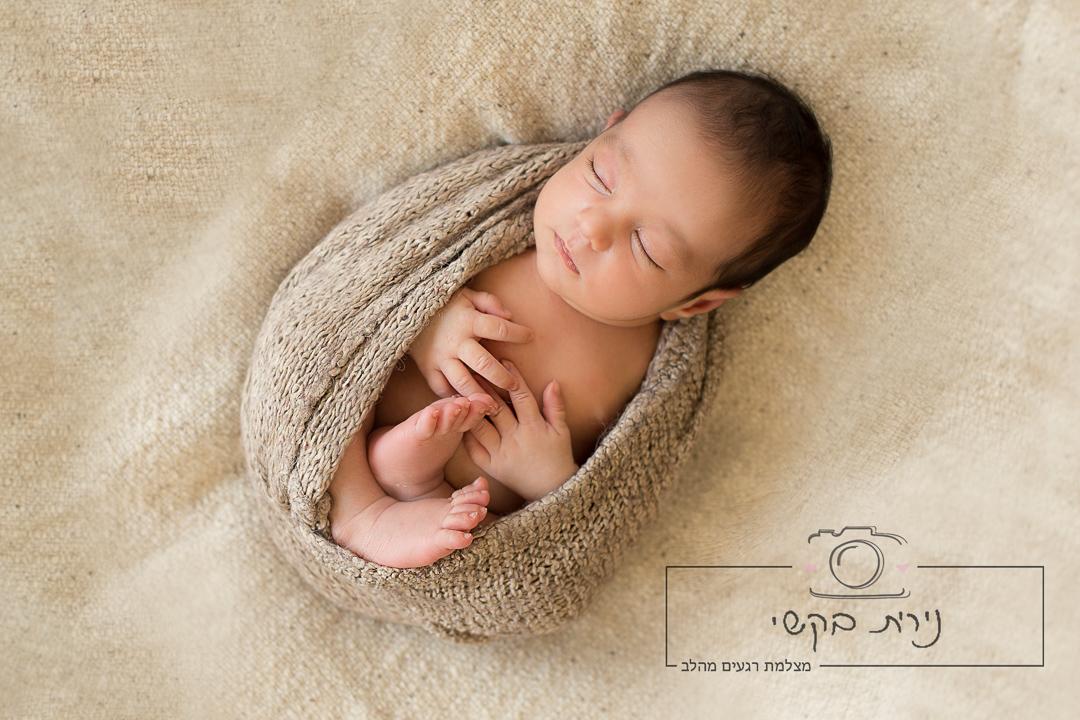 newborn   (19)