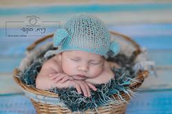 newborn   (8)