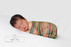 newborn  (96)