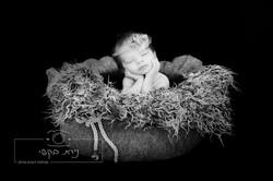 newborn   (70)