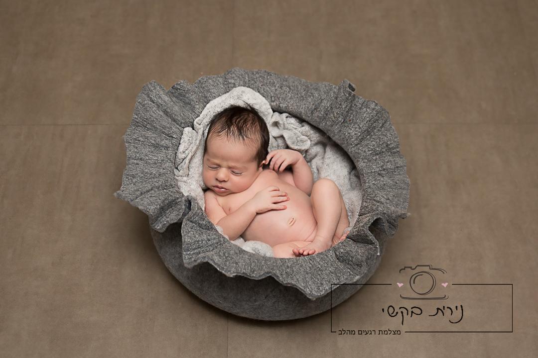 newborn   (53)