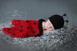 newborn   (6)