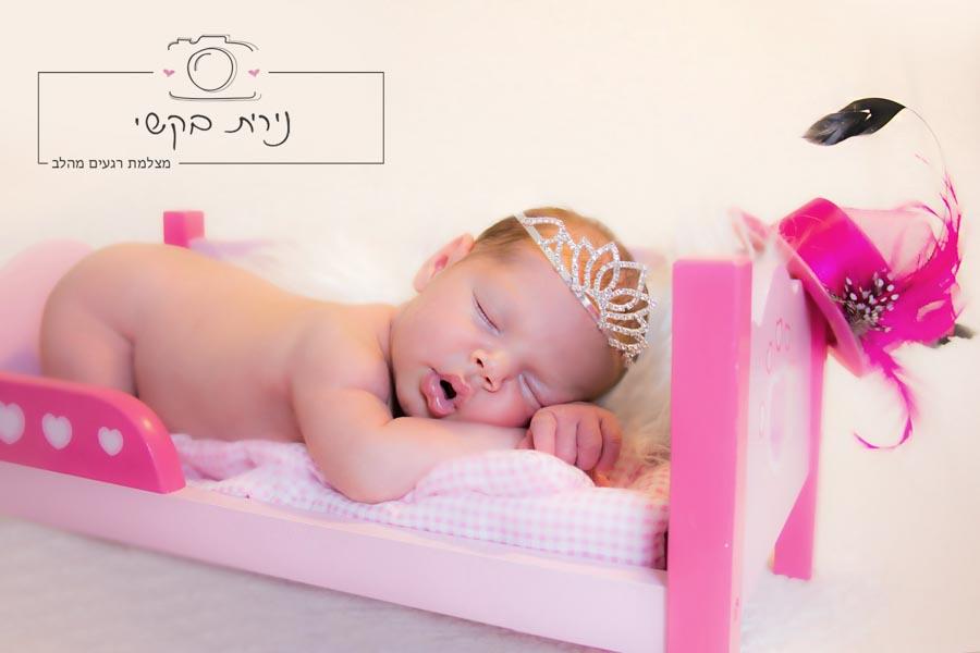 newborn  (92)