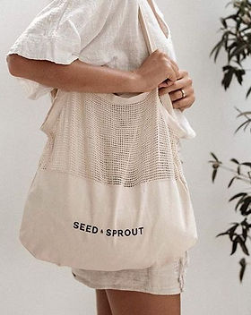 Seed & Sprout - Environmental and Sustainable Living
