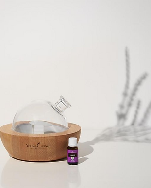 young living distributor and mentor - aria diffuser