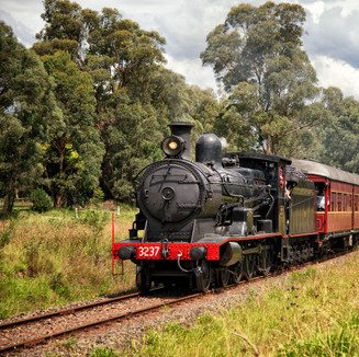 Steam Train Travel