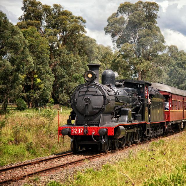 Steam Train Travel