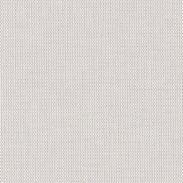 White Light Gray