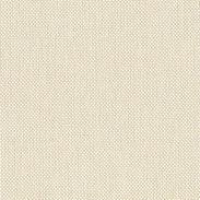 White Beige