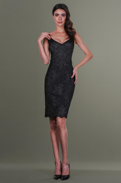 Midi Embroidered Lace Dress