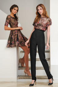 Embroidered Mini Dress / Embroidered Tulle Top and Waist Pants