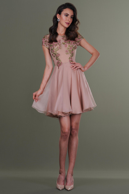 Lace Organza Short Dress