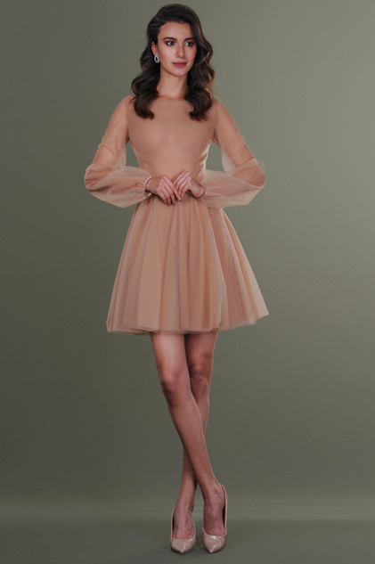 Nude Short Tulle Dress