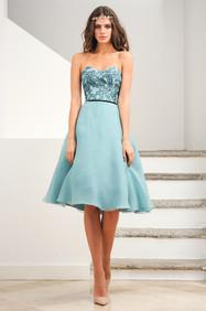 Off Shoulder Organza Lace Dress