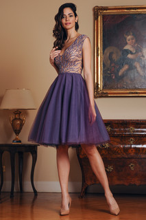 Hand Embroidered Tulle Mini Dress