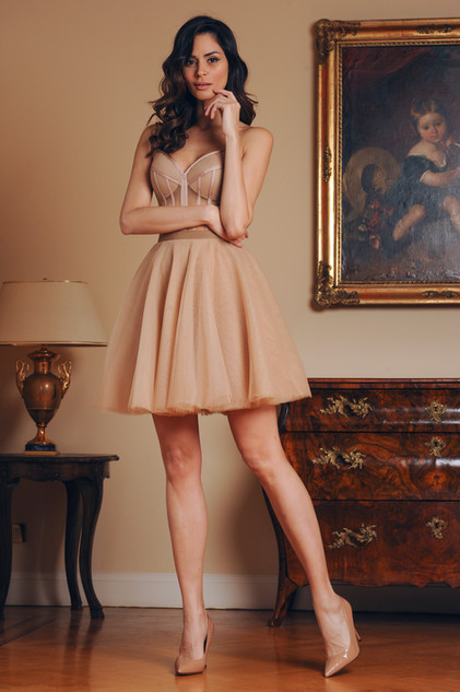 Tulle Bustier and Tulle Short Skirt