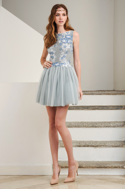 Lace Tulle Mini Dress