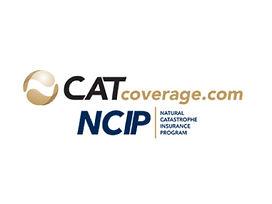 cat-coverage.jpg