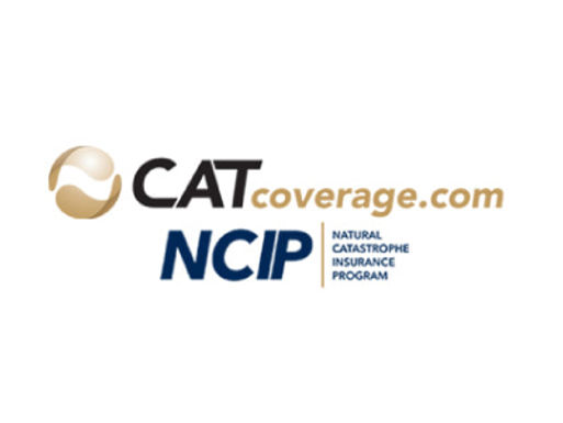 Cat Coverage