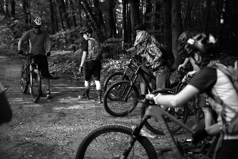 BikeCheck-1_edited.jpg