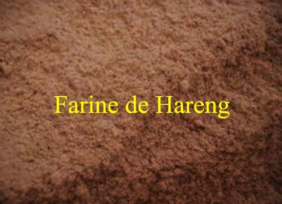 Farine de Harengs